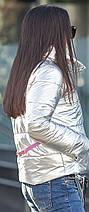 Короткая серебристая куртка на силиконе с ярким пояском на спине, фото 2