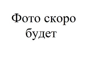 Тен оттайки холодильника Indesit 100Вт. C00141706