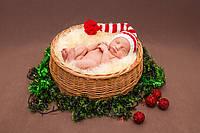 Карзинка для фотосессий новорожденных, фото 1