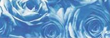 Калька URSUS А4 115г/м Розы Светло-синий UR-50614606R