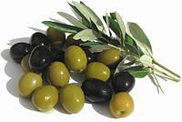 Оливки и маслины