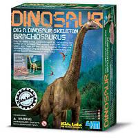 Игра 4M скелет динозавра Брахиозавр 3237