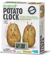 Игра 4M научная Часы работают от картофеля. 3275