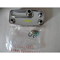 Теплообменник вторичный (пластинчатый) ГВС  для газового котла Immergas Nike Mini, Eolo Mini