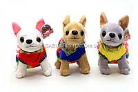 Мягкая игрушка «Собачка» 3 вида SF265376