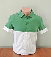 Футболка мужская зелено-белая