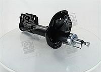 Амортизатор задний Hyundai Tucson 2004-->2010 Rider (Венгрия) RD.2870.334.504, RD.2870.334.505