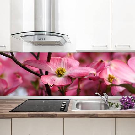 "Фартук на кухню / Скинали ""Цветущая магнолия"", фото 2"