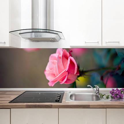 """Фартук на кухню / Скинали """"Роза"""", фото 2"""