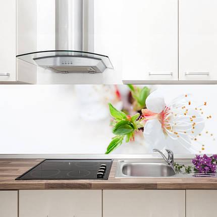 """Фартук на кухню / Скинали """"Нежный цветок"""", фото 2"""