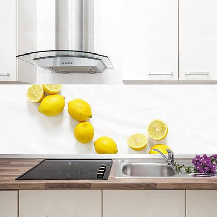 """Фартук на кухню / Скинали """"Сочные лимоны"""", фото 2"""