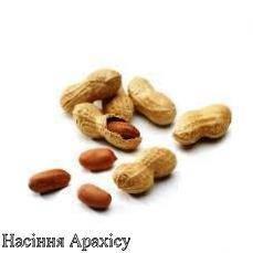 Насіння арахісу