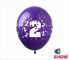 """Воздушные шарики """" Цифра два """" круговая шелкография 12"""" (30 см)  ТМ Show"""
