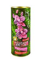 Набор для творчества DankoToys DT БЦ-04 бисерный цветок Орхидея