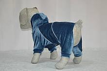 Комбинезон для собак Бархат, фото 2