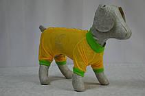 Комбінезон для собак Літо, фото 2