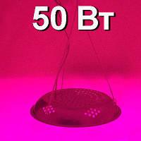 LED светильник полного спектра50 Вт