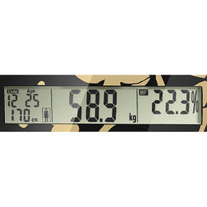 Напольные весы электронные SCARLETT SC-216, стекло, фото 2