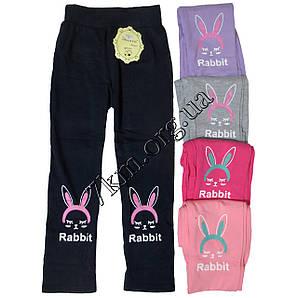 """Лосины детские для девочек Золото """"Rabbit"""" 4-8 лет Оптом A427-6"""