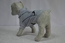 Толстовка Трикотаж для собак, фото 3