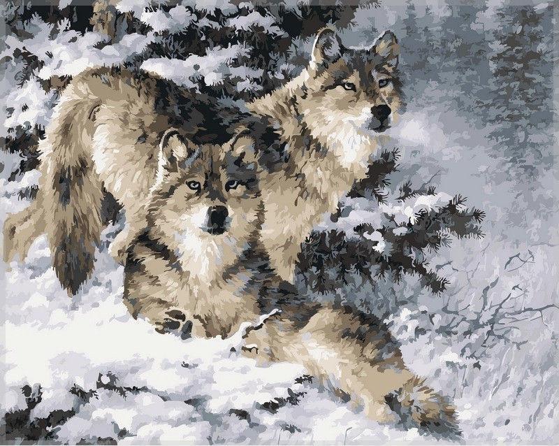 Картина раскраска по номерам на холсте 40*50см Babylon VP344 Пара волков