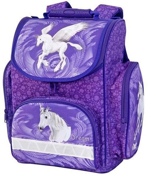 Рюкзак (ранец) школьный каркасный ZiBi ZB14.0116DR Dream
