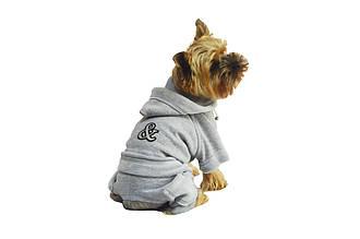 Костюм для собак Турист серый