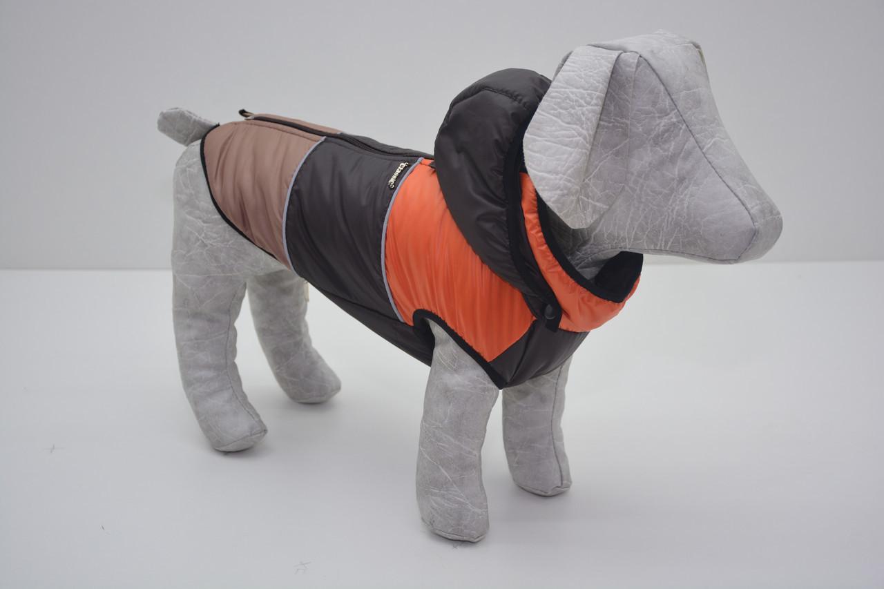 Жилет Трио с капюшоном для собак коричневая