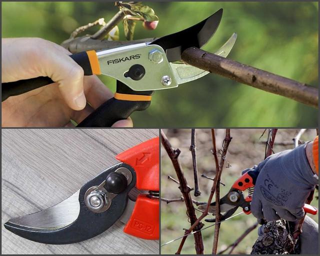 Садовые ножницы для обрезки деревьев