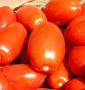 Семена томата Улиссе F1, 2 500 шт.