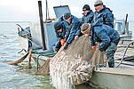 Промышленная рыбалка