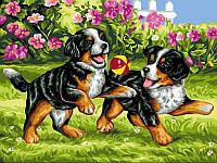 Картина раскраска по номерам на холсте 30*40см Babylon VK107 Щенки на прогулке