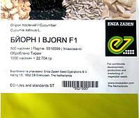 Семена огурца Бйорн F1, 500 шт.