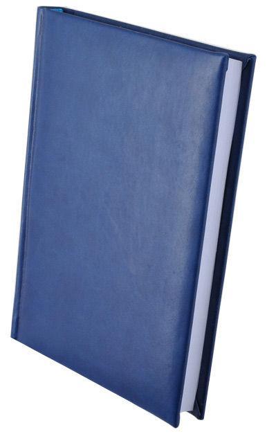 Ежедневник  А5 Buromax недатированный Expert Синий BM.2004-02