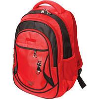 Рюкзак (ранец) школьный ZIBI ZB16.0629CT Cat