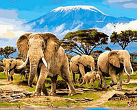 Картина раскраска по номерам на холсте 40*50см Babylon VP622 Семейство слонов