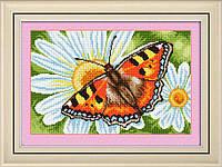 Набор алмазной вышивки LasKo TT009 Бабочка на ромашке