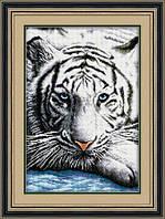 Набор алмазной вышивки LasKo TT021 Бенгальский тигр