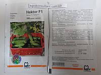 Семена огурца Гектор F1 (Nunhems / Агропак+), 100 семян — пчелоопыляемый, ультра-ранний гибрид (40-44 дня), фото 1