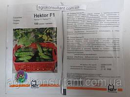 Семена огурца Гектор F1 (Nunhems / Агропак+), 100 семян — пчелоопыляемый, ультра-ранний гибрид (40-44 дня)
