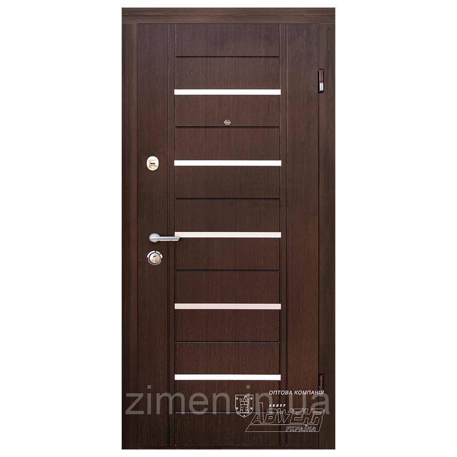 Дверь входная Alesto