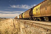 Услуги транспортировки масличных культур ж\д транспортом