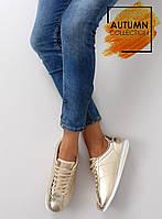 Золотистые акуратные женские кроссовки GOLD, фото 1