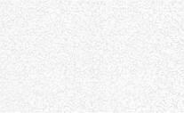 Обои BRAVO 1.06x10.05м. впененный винил на флизе (