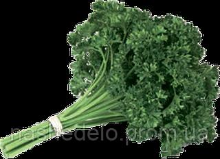 Семена петрушки Рина 10 грамм Rijk Zwaan