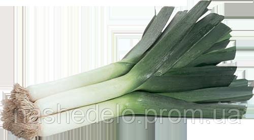 Семена лука-порей 10 грамм Rijk Zwaan