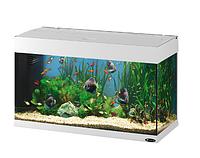 Стеклянный аквариум DUBAI 80 WHITE.Ferplast