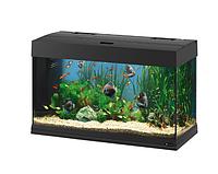 Стеклянный аквариум DUBAI 80 BLACK.Ferplast