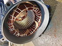 Срочный ремонт электродвигателей Запорожье