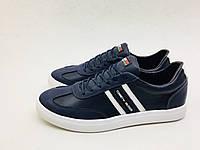 Мужские кроссовки Tommy Hilfiger сине-белые